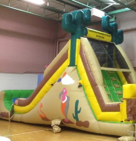 Stampede Inflatable Slide