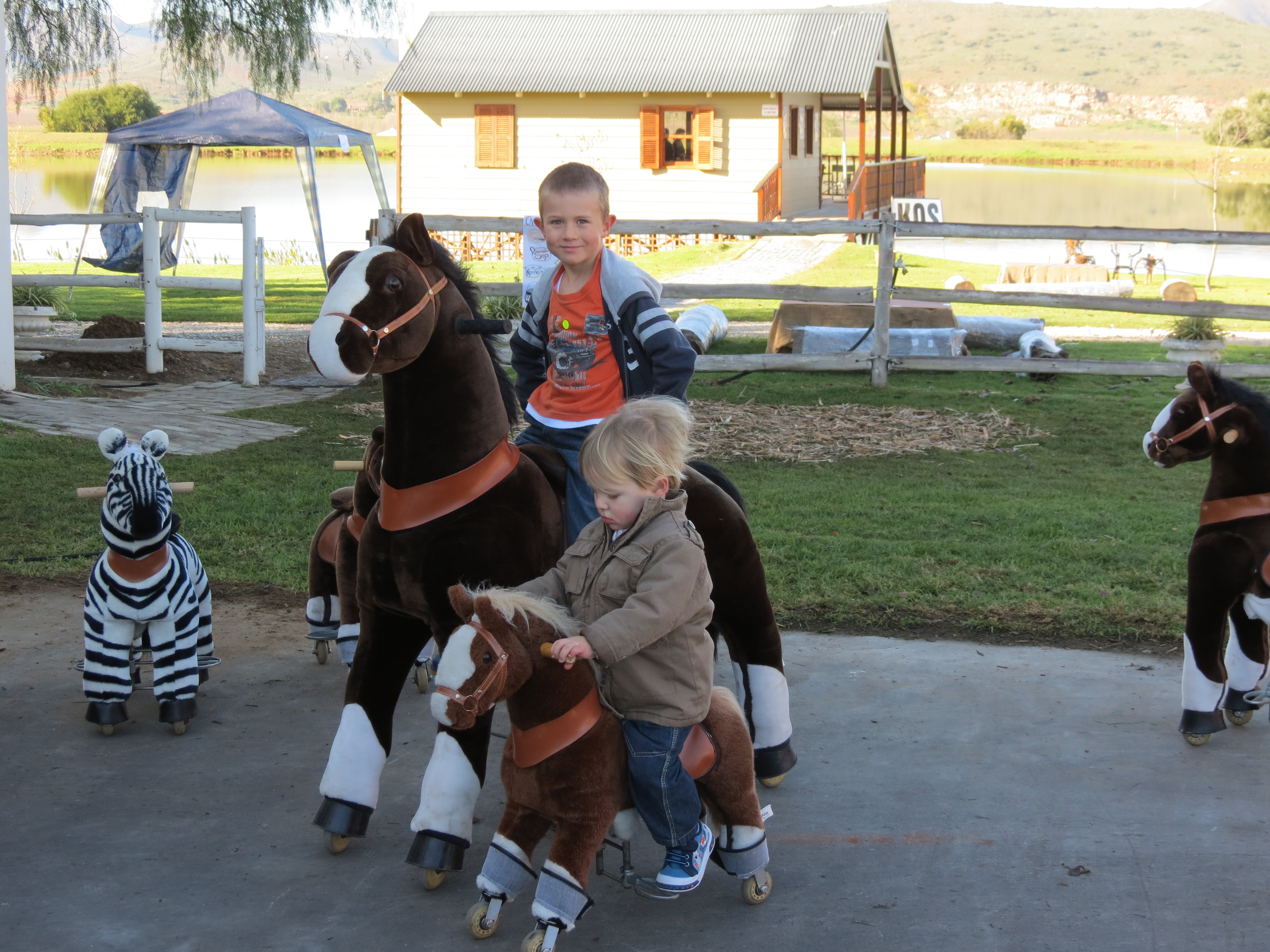 Pony Cycles Carnivals For Kids At Heart