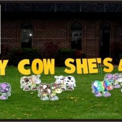 Lawn sign rentals Strathmore