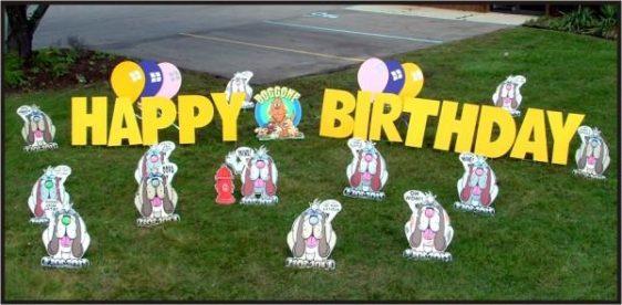 yard birthday lawn rentals