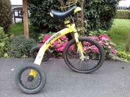 Fun adult tricycles