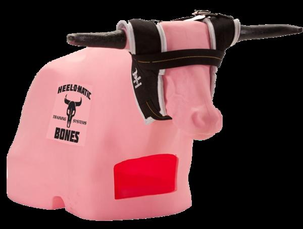 Pink Bull roping
