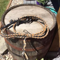 Western Horse Whip