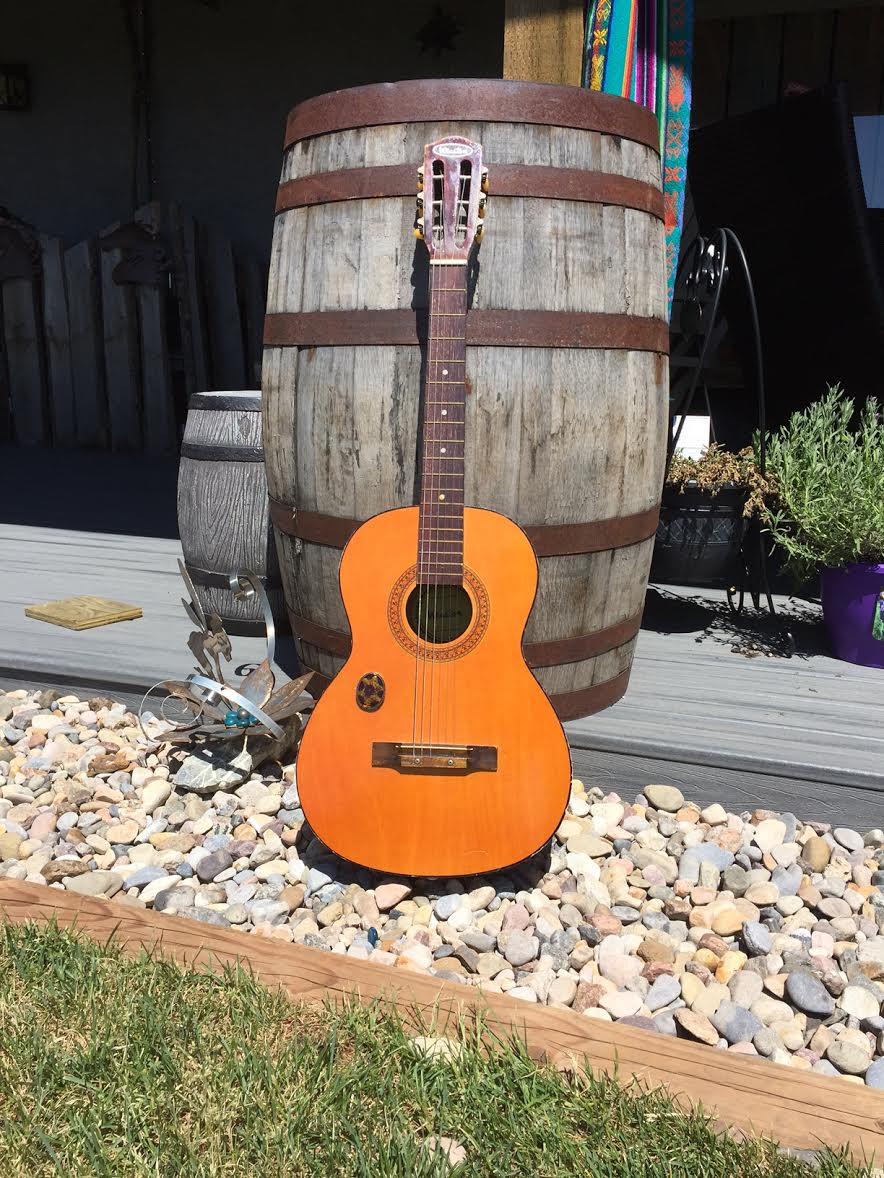 Guitar for Rent